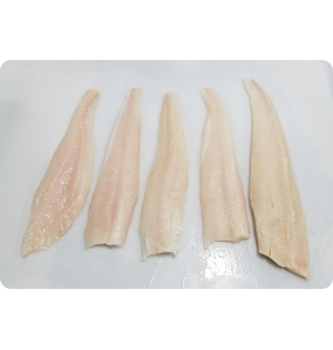 Halibut Fletch Fillets