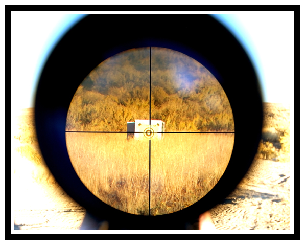 Businesses in the Crosshair