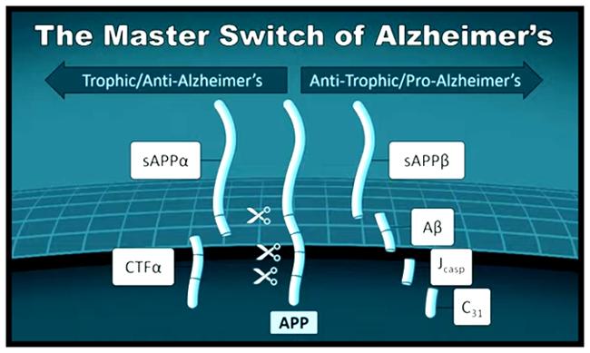 Master Switch of Alzheimer's