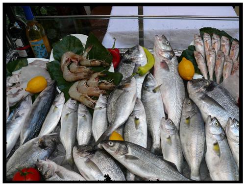 Wild-Caught Seafood