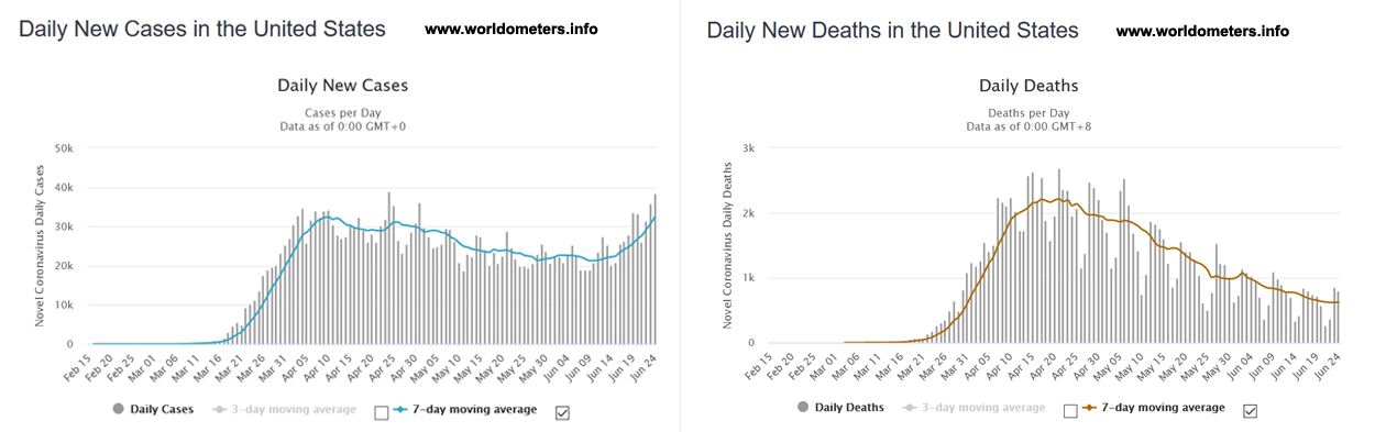 Daily New Cases and Daily New Deaths